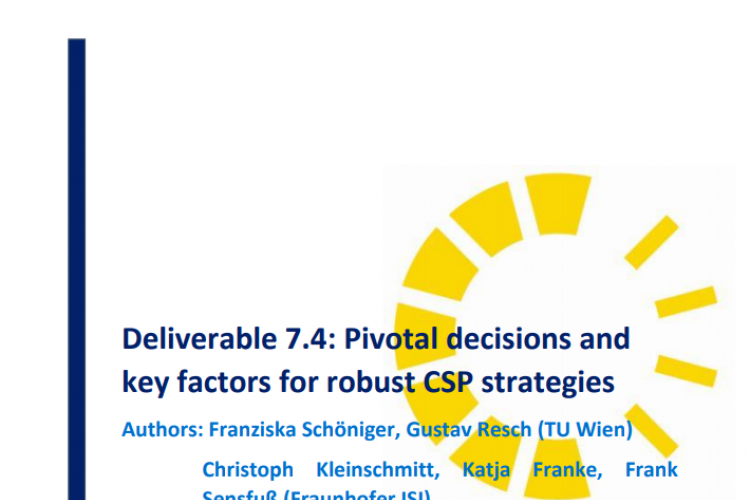 REPORT: PIVOTAL DECISIONS AND KEY FACTORS FOR ROBUST CSP STRATEGIES